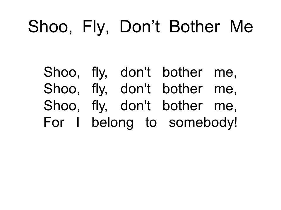 Shoo, Fly, Don't Bother Me