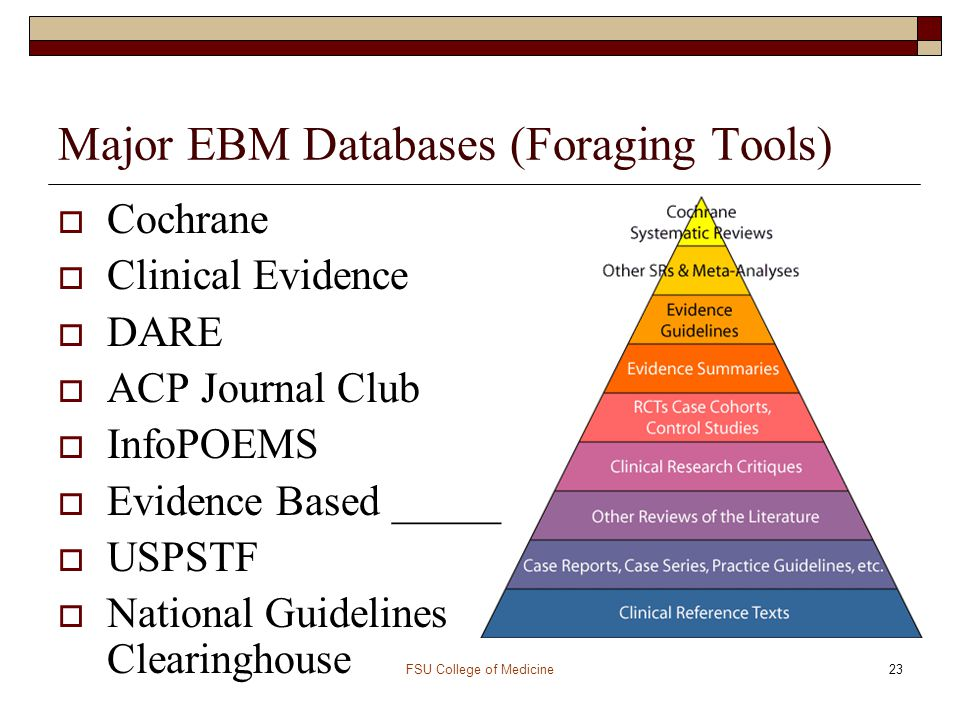 Major EBM Databases (Foraging Tools)
