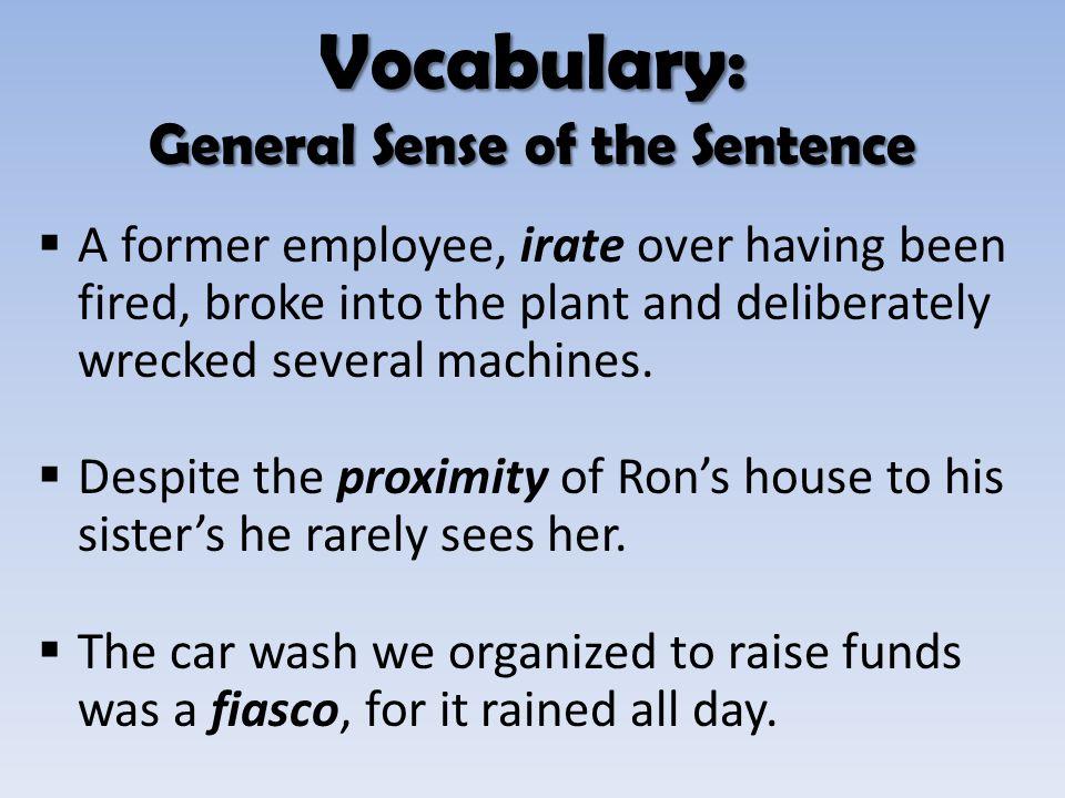 Vocabulary: General Sense of the Sentence