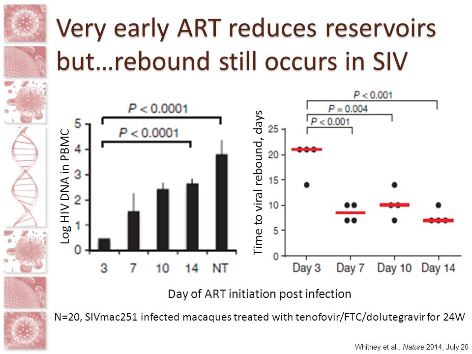 Very early ART reduces reservoirs but…rebound still occurs in SIV