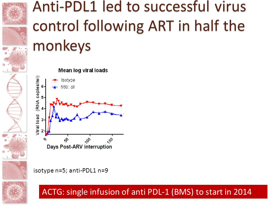 Anti-PDL1 led to successful virus control following ART in half the monkeys