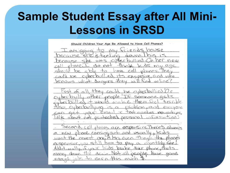 Sample Student Essay after All Mini-Lessons in SRSD