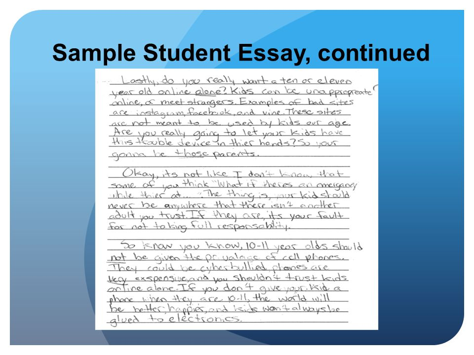 Sample Student Essay, continued