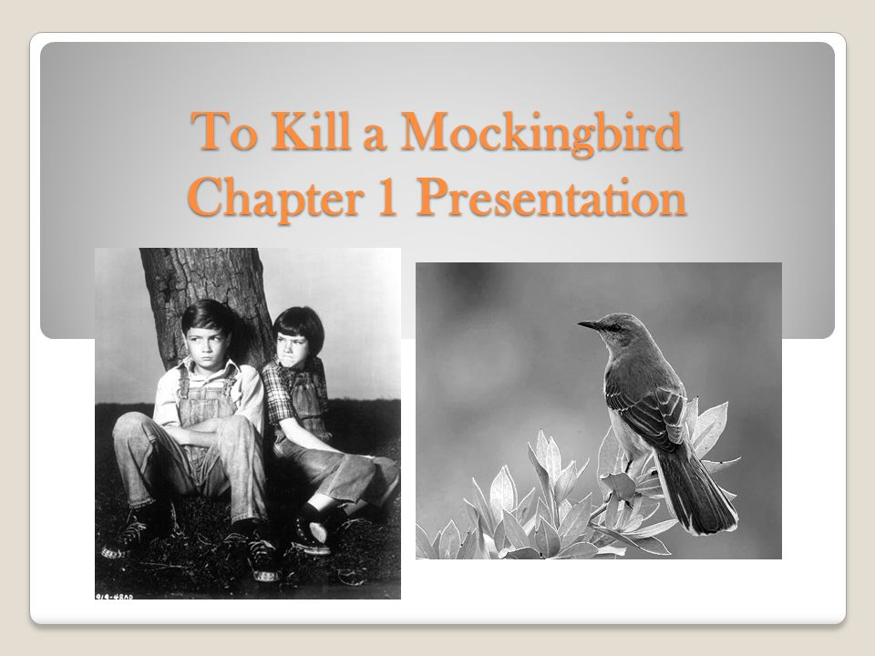 To Kill a Mockingbird Chapter 1 Presentation
