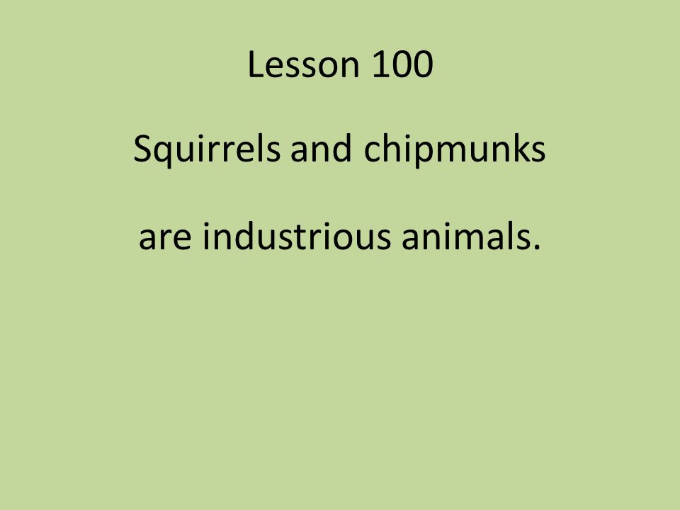 Squirrels and chipmunks are industrious animals.
