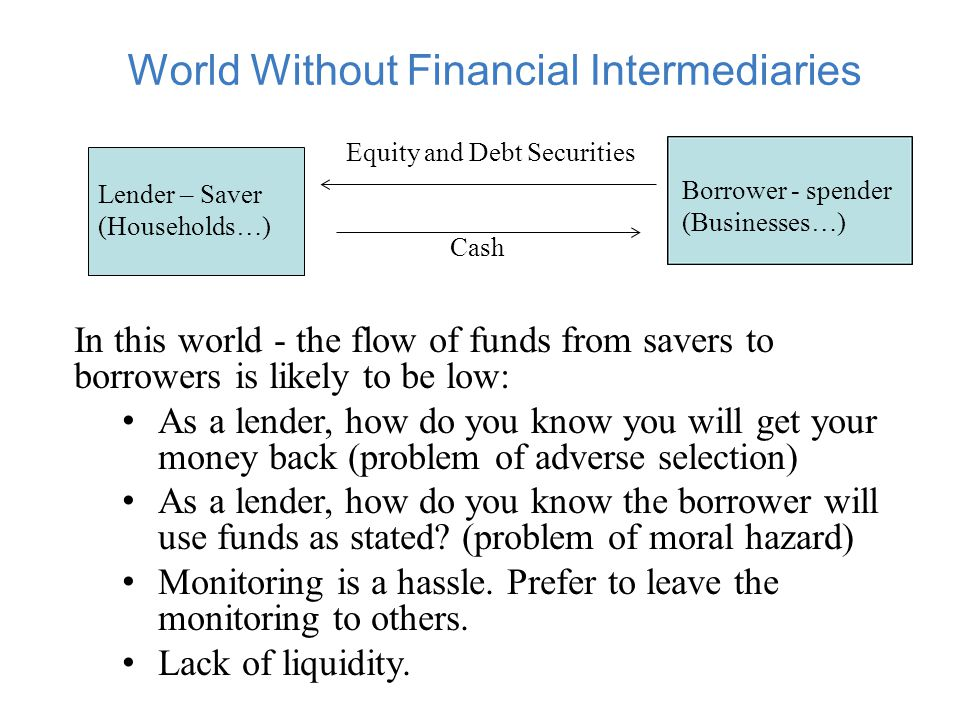 World With Financial Intermediaries (FI)