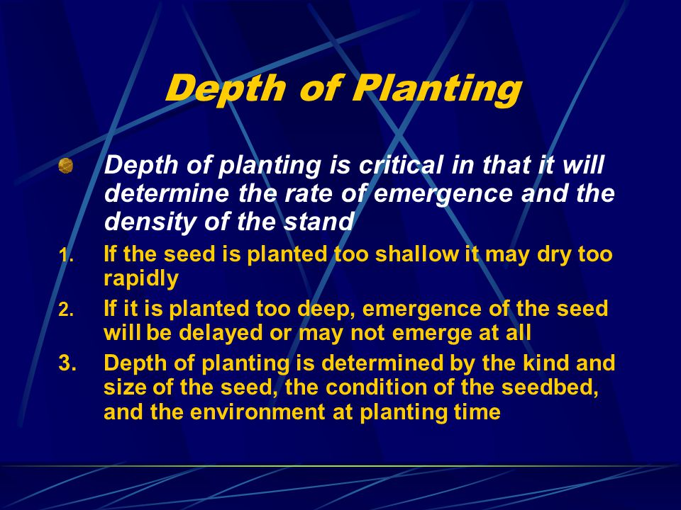 Depth of Planting Depth of planting is critical in that it will determine the rate of emergence and the density of the stand.