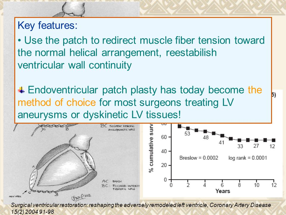 Key features: Use the patch to redirect muscle fiber tension toward the normal helical arrangement, reestabilish ventricular wall continuity.