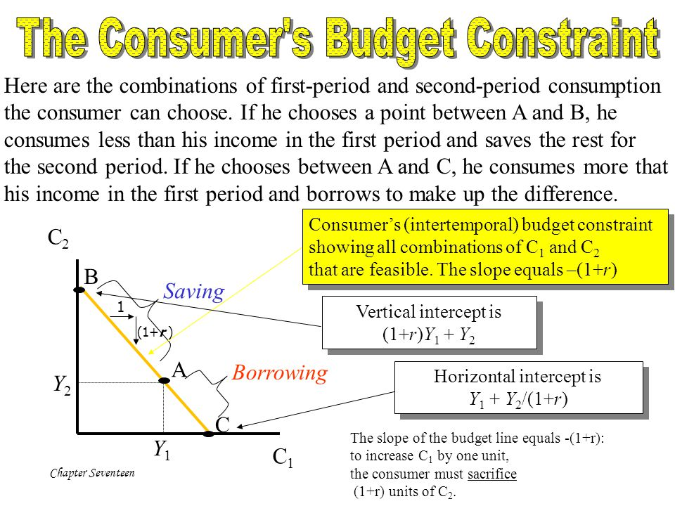 The Consumer s Budget Constraint