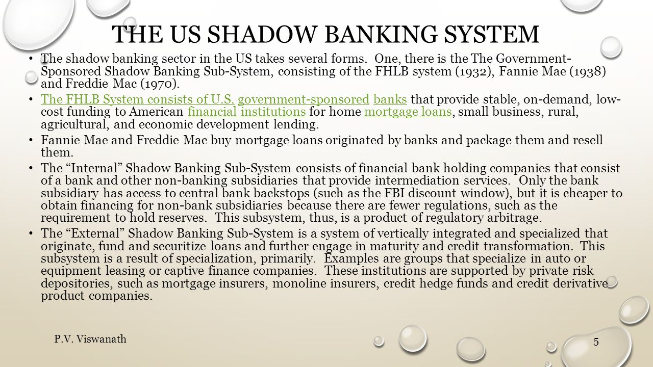 The US shadow banking system