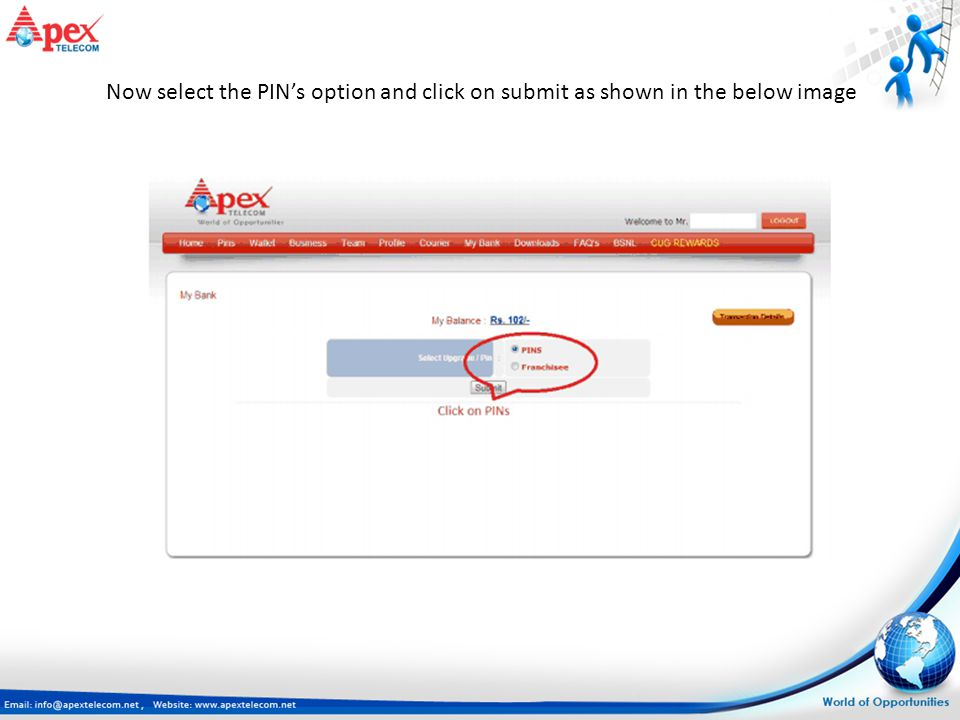 Now select the PIN's option and click on submit as shown in the below image