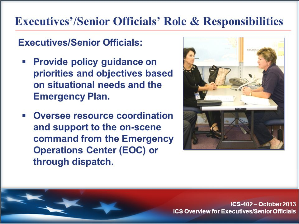 Executives'/Senior Officials' Role & Responsibilities