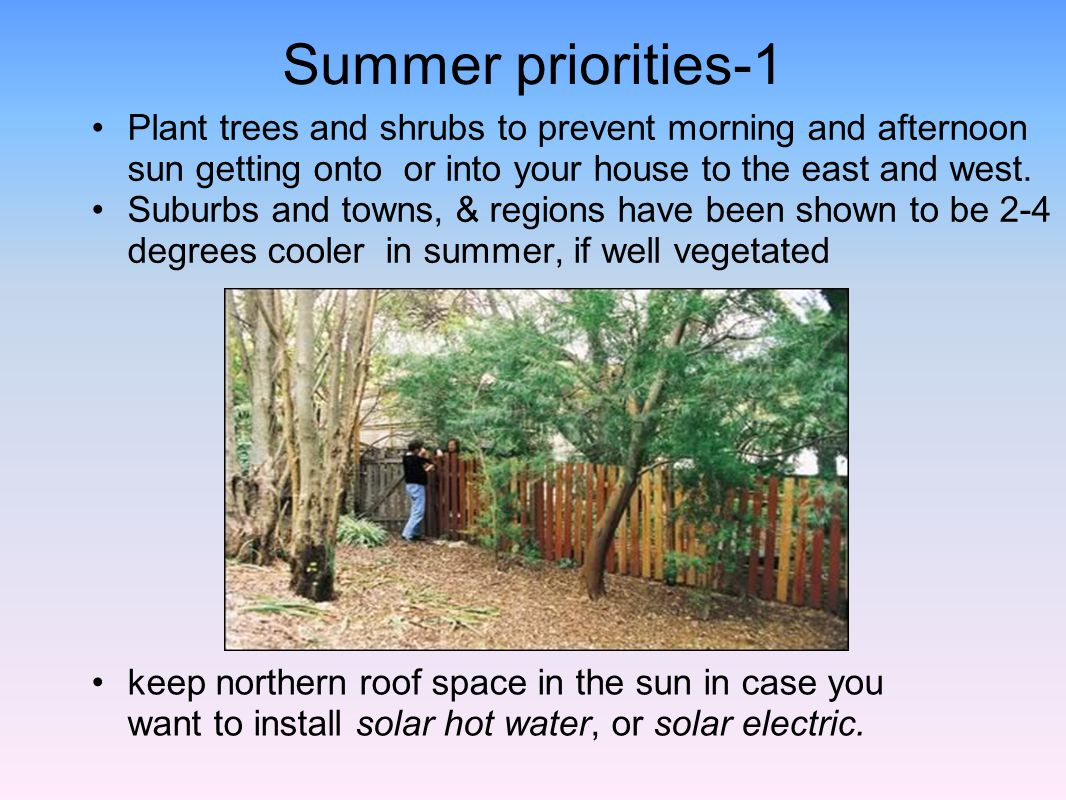 Summer priorities-1 Plant trees and shrubs to prevent morning and afternoon sun getting onto or into your house to the east and west.