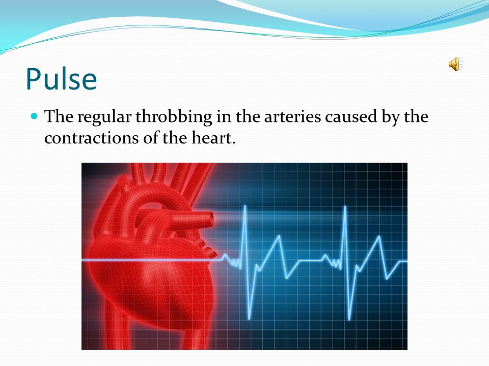 Pulse The regular throbbing in the arteries caused by the contractions of the heart.