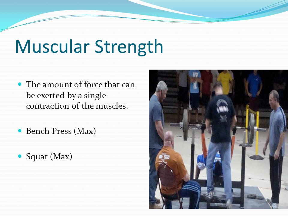 Muscular Strength The amount of force that can be exerted by a single contraction of the muscles. Bench Press (Max)