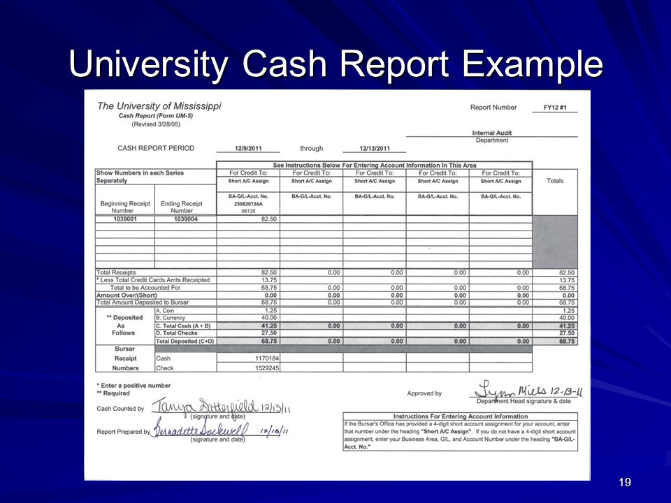 University Cash Report Example
