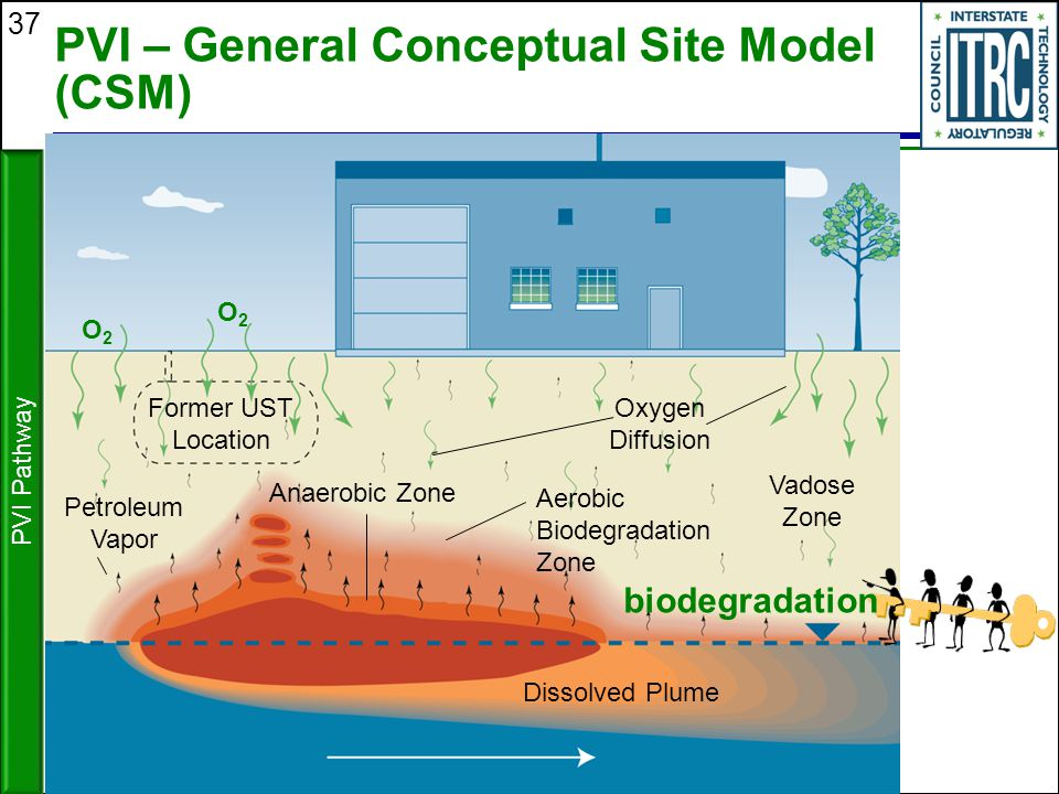 PVI – General Conceptual Site Model (CSM)
