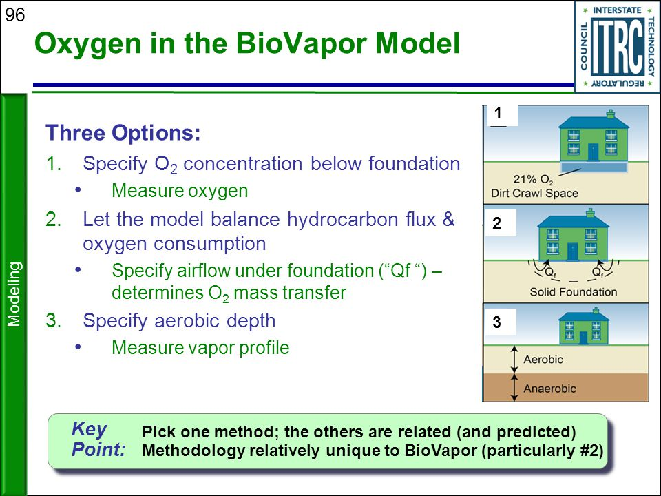 Oxygen in the BioVapor Model