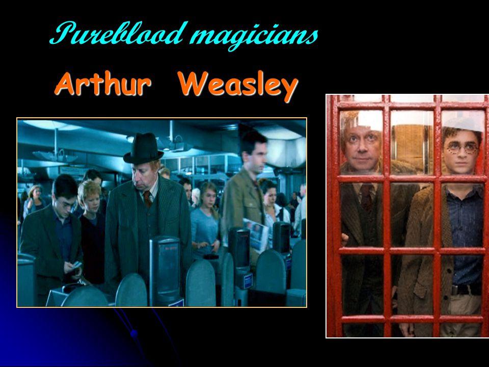 Pureblood magicians Arthur Weasley