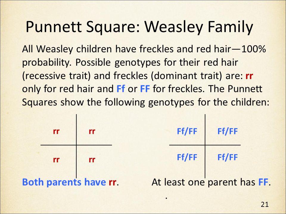 Punnett Square: Weasley Family