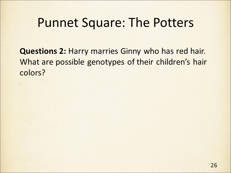 Punnet Square: The Potters
