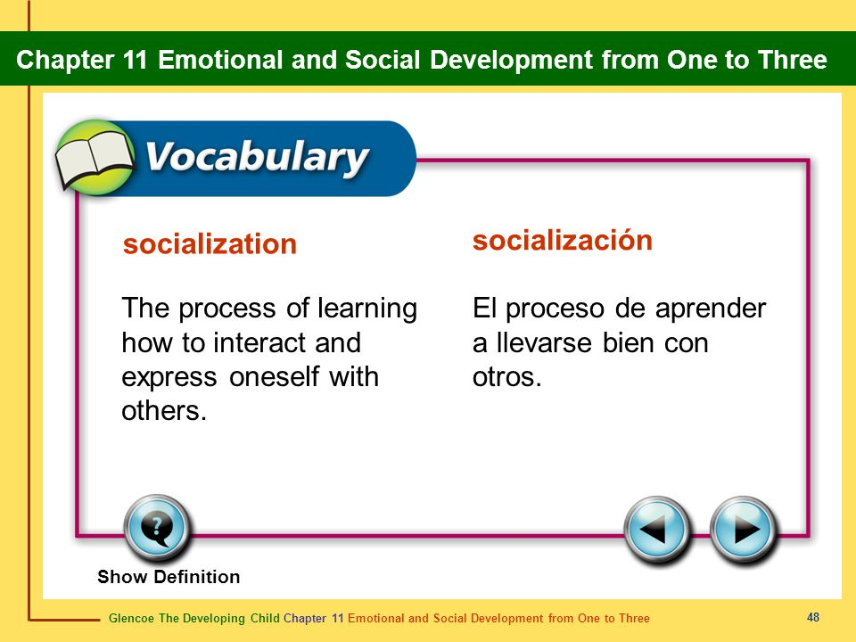 socialización socialization