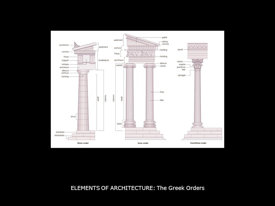 ELEMENTS OF ARCHITECTURE: The Greek Orders