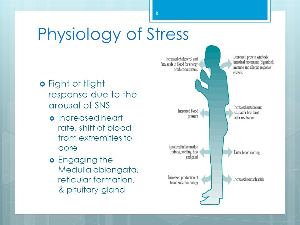 Physiology of Stress Fight or flight response due to the arousal of SNS. Increased heart rate, shift of blood from extremities to core.
