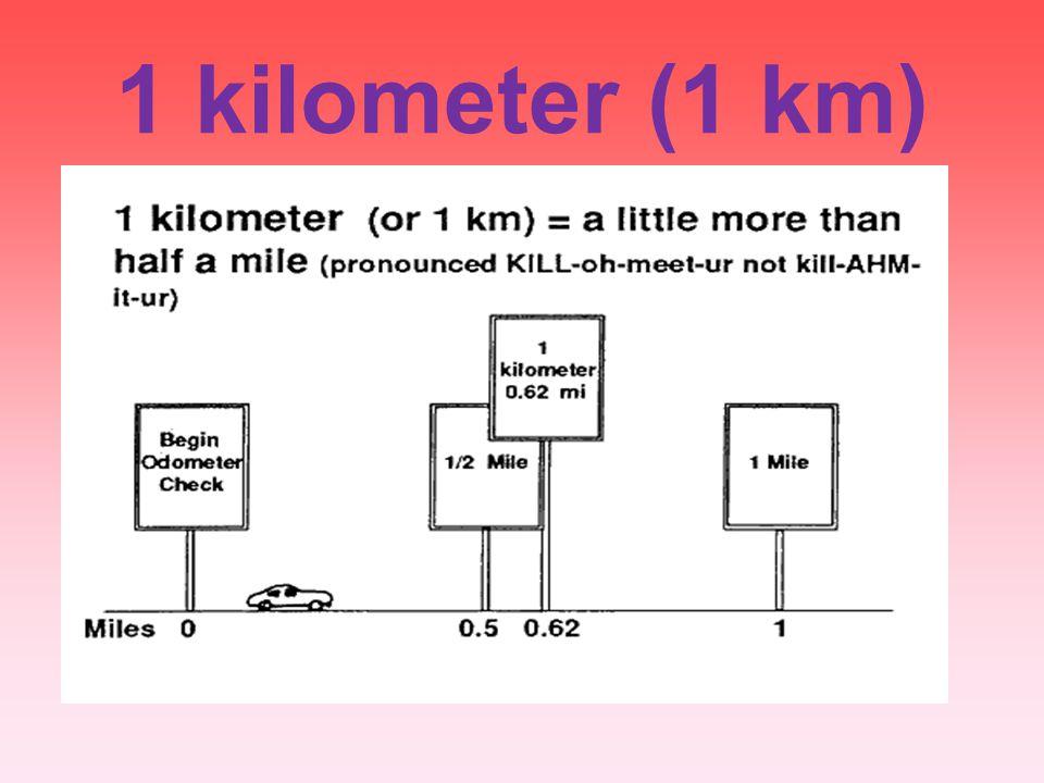1 kilometer (1 km)