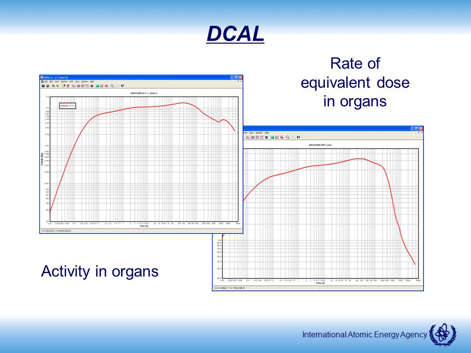 Rate of equivalent dose in organs