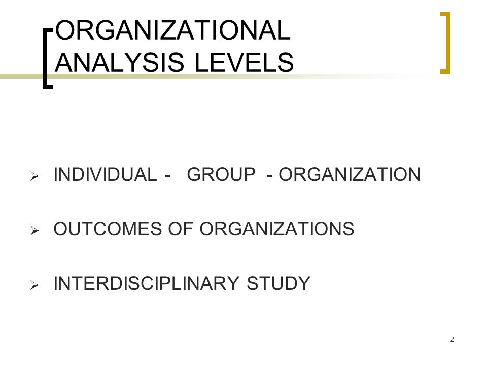 ORGANIZATIONAL ANALYSIS LEVELS