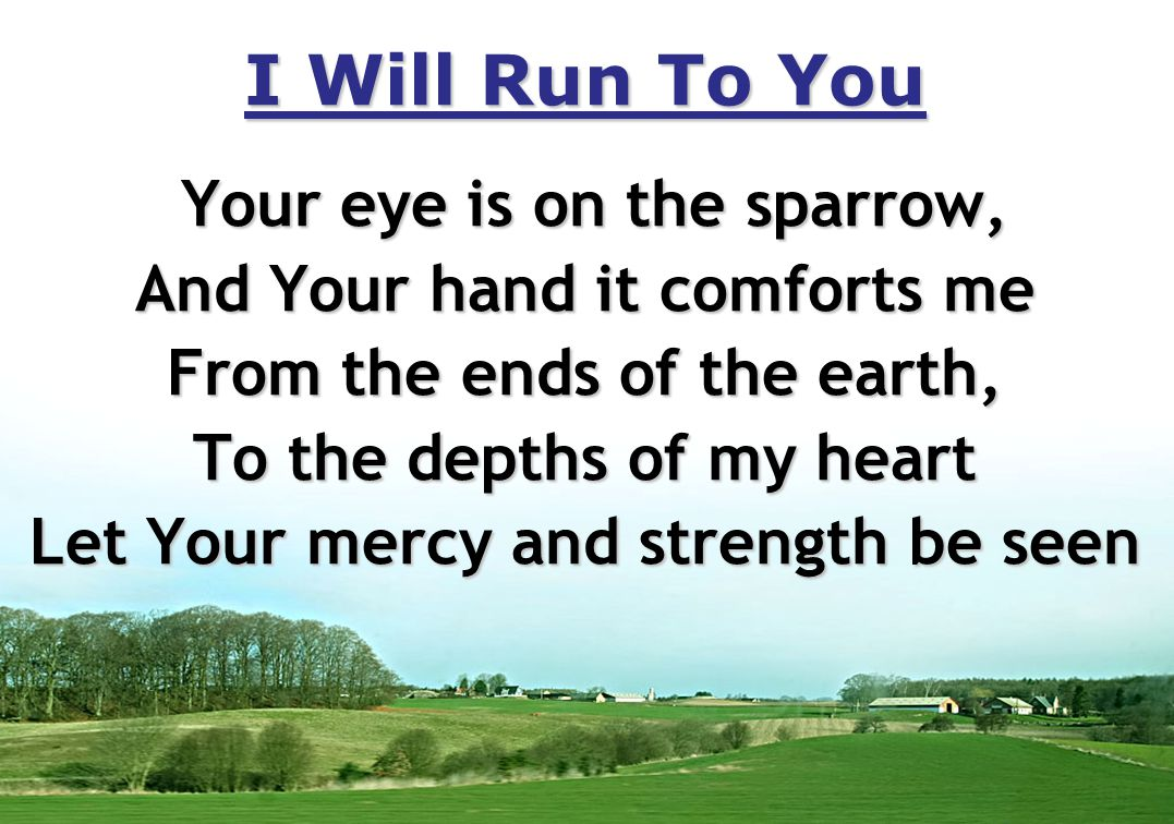 I Will Run To You Your eye is on the sparrow, And Your hand it comforts me From the ends of the earth, To the depths of my heart Let Your mercy and strength be seen