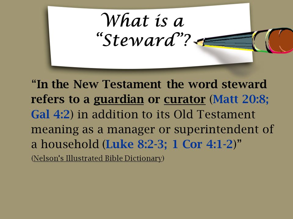 What is a Steward
