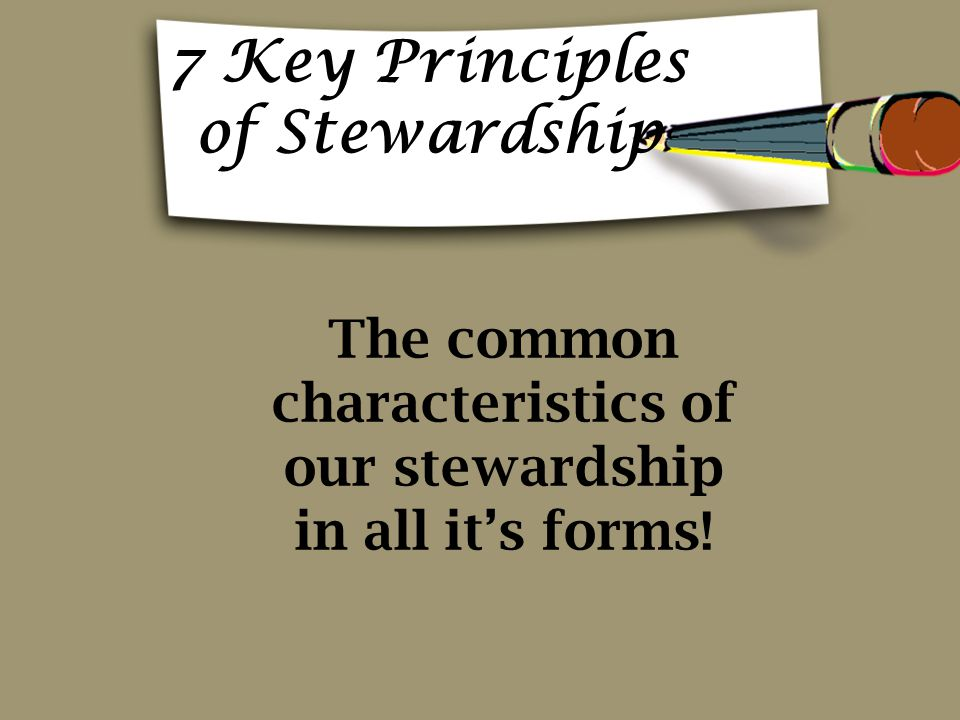 7 Key Principles of Stewardship