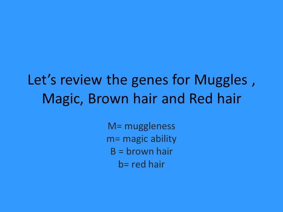 Let's review the genes for Muggles , Magic, Brown hair and Red hair
