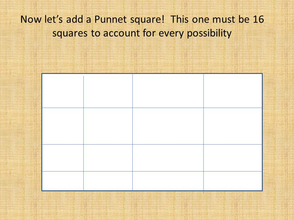Now let's add a Punnet square