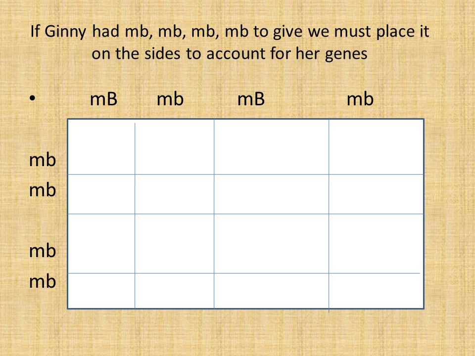 If Ginny had mb, mb, mb, mb to give we must place it on the sides to account for her genes