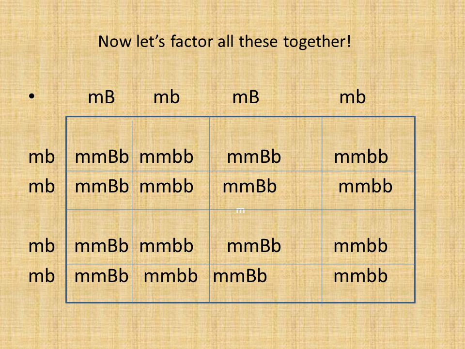 Now let's factor all these together!