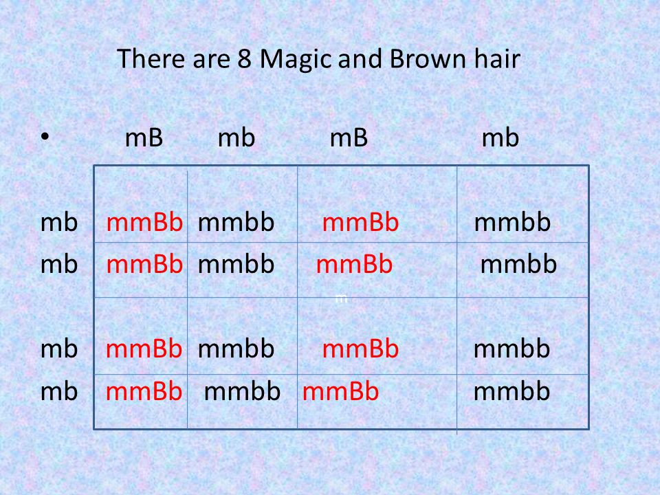 There are 8 Magic and Brown hair