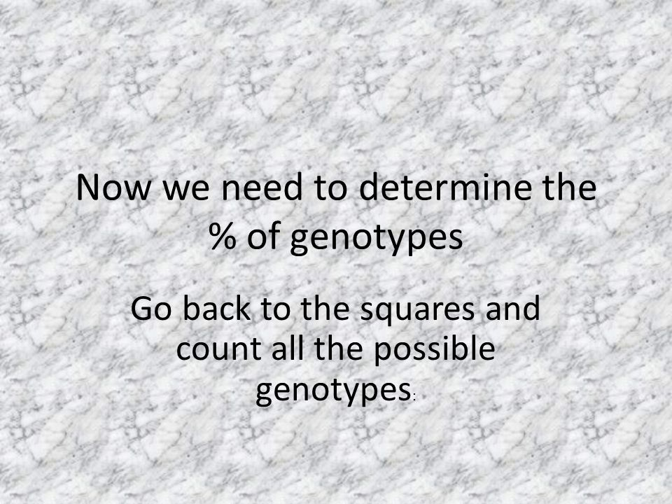 Now we need to determine the % of genotypes