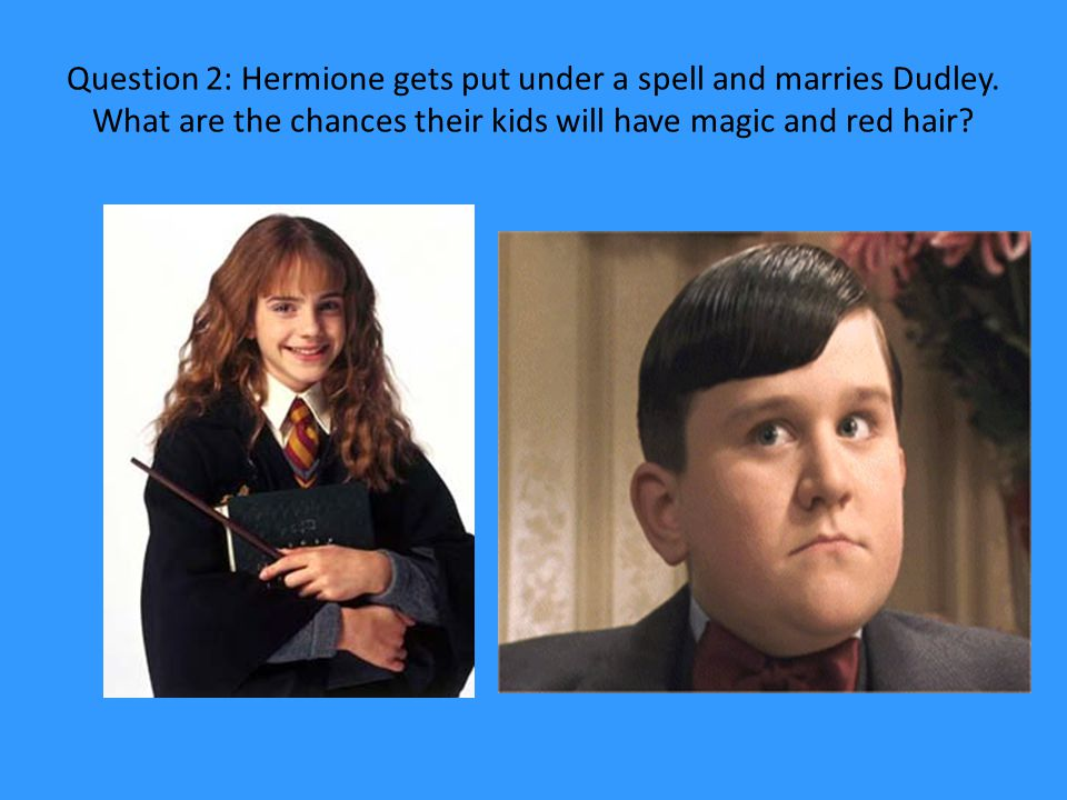 Question 2: Hermione gets put under a spell and marries Dudley