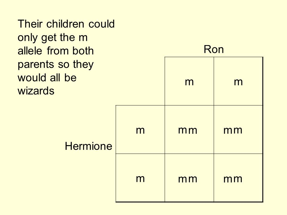 Their children could only get the m allele from both parents so they would all be wizards