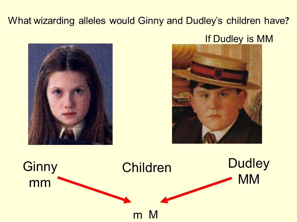 What wizarding alleles would Ginny and Dudley's children have