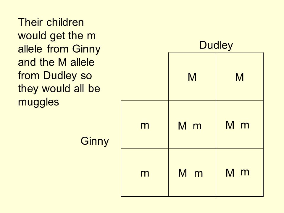 Their children would get the m allele from Ginny and the M allele from Dudley so they would all be muggles