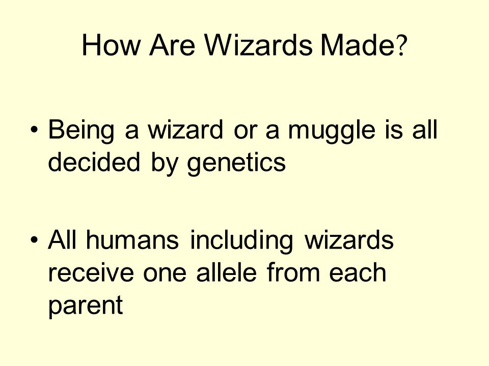 How Are Wizards Made. Being a wizard or a muggle is all decided by genetics.