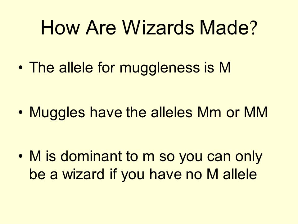 How Are Wizards Made The allele for muggleness is M