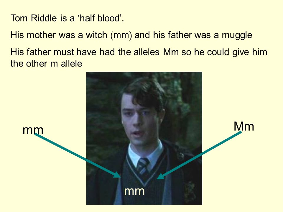 Mm mm mm Tom Riddle is a 'half blood'.
