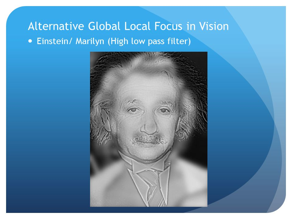 Alternative Global Local Focus in Vision