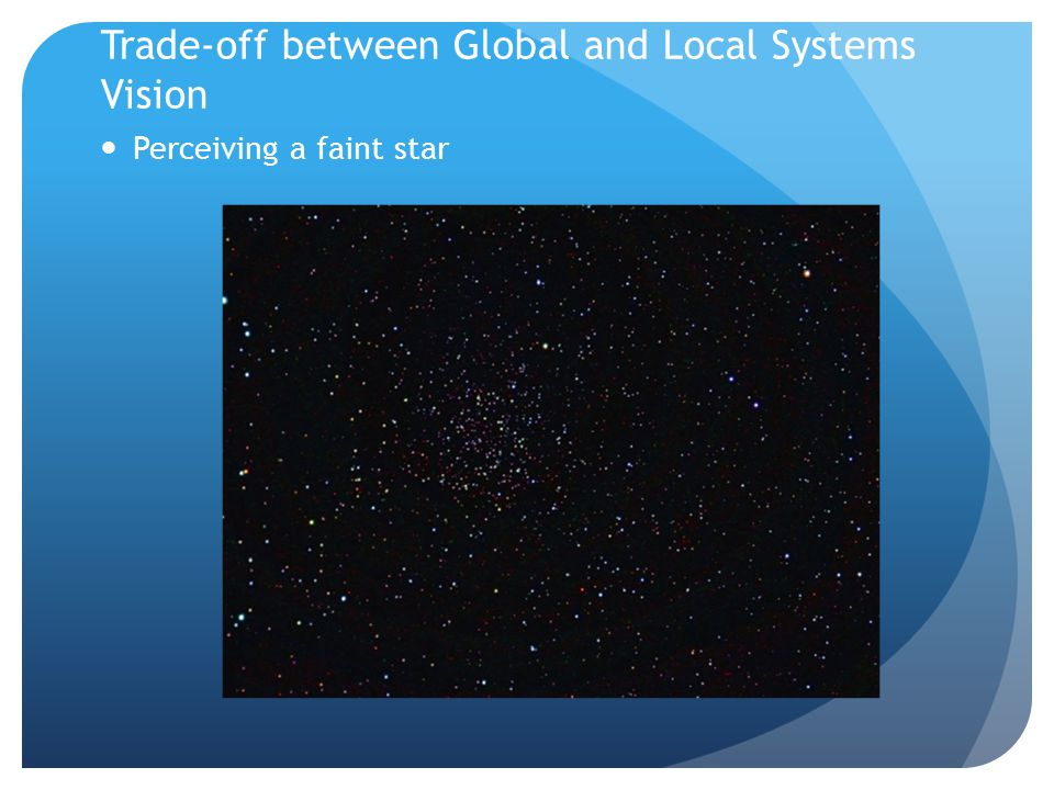 Trade-off between Global and Local Systems Vision