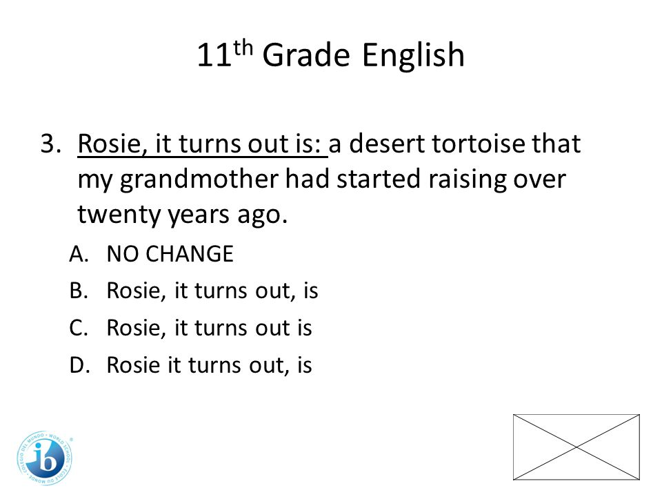 11th Grade English Rosie, it turns out is: a desert tortoise that my grandmother had started raising over twenty years ago.